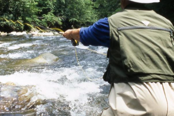 fishing_Gatlinburg Trout Tournament_Smoky Mountains