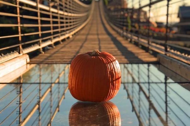 halloween-gatlinburg-skybridge-pumpkin-toss-e1572018280116