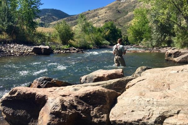 Fly fisher2