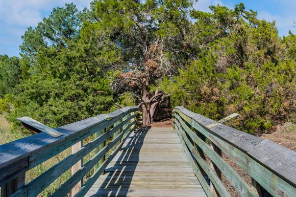 The Earth Day Nature Trail winds through the marshes and maritime forests found in Brunswick, GA