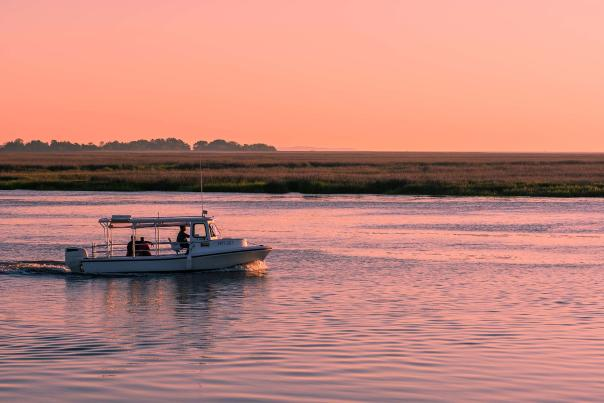 Boat charters are one of the popular ways to tour the waterways around the Golden Isles of Georgia