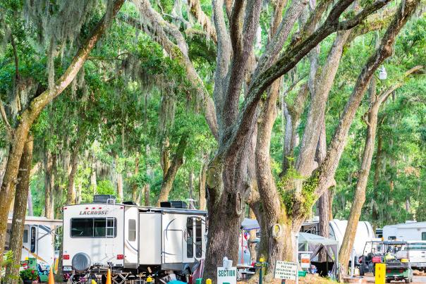 Campsites near the beach are a popular lodging option in Golden Isles GA