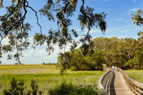 Jekyll Island Biking Trail