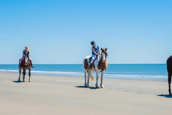 A group of visitors explore Georgia's Golden Isles beaches on horseback.