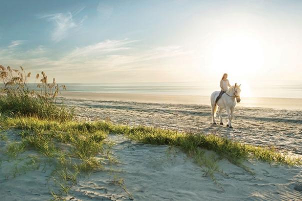 horseback-beach.jpg