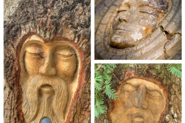 tree_spirit_collage.jpg