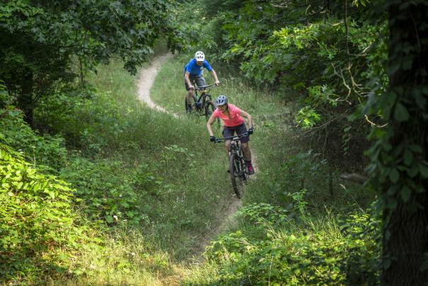 Two mountain bikers biking through a trail in West Michigan