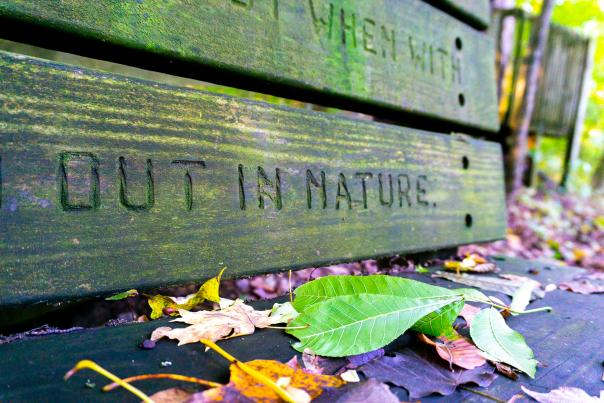 """A bench that reads """"out in nature"""" at Blandford Nature Center."""