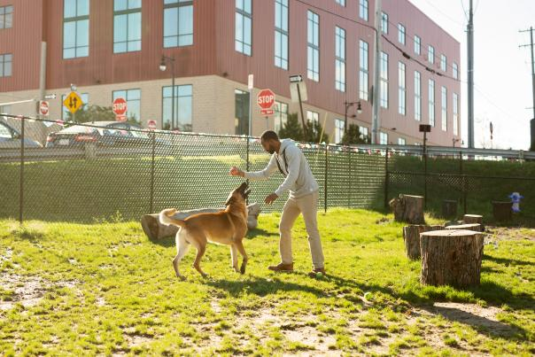 Downtown Dog Park by Founders Brewing Company