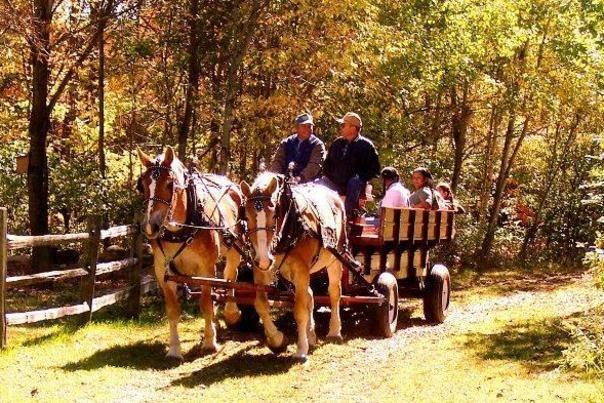 Celebrate the Fall season at Blandford Nature Center's Annual Harvest Festival