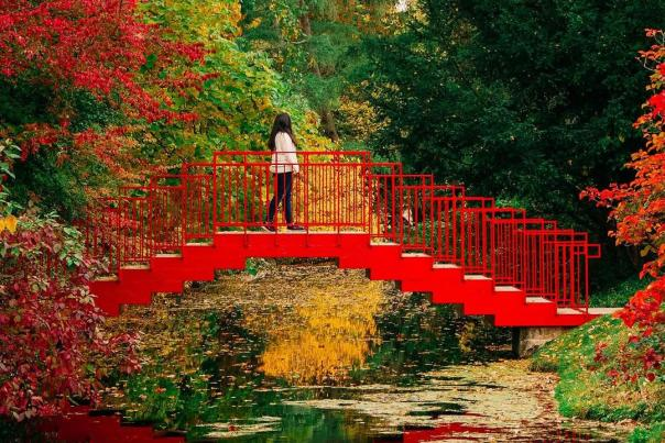UGC - Outdoors - Attractions - Dow Gardens - Woman Crossing Red Bridge in Fall - @namitha_hegde