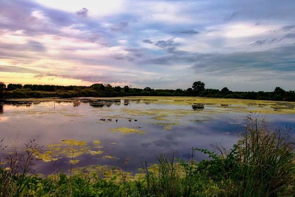 UGC - Outdoors - Scenic - Shiawassee National Wildlife Refuge - @ninaneuschuetz