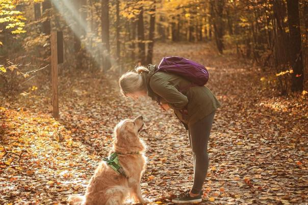 UGC - Outdoors - Pets - Midland City Forest - Dog with Woman on Fall Trail - @wildgoldens
