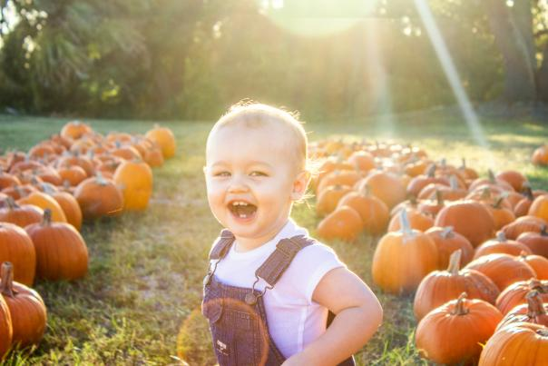 Coastal Mississippi Pumpkin Patches and Corn Mazes