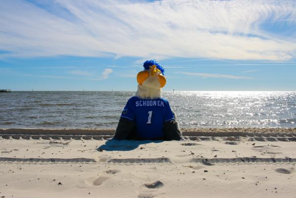Schooner on the Beach Biloxi Shuckers
