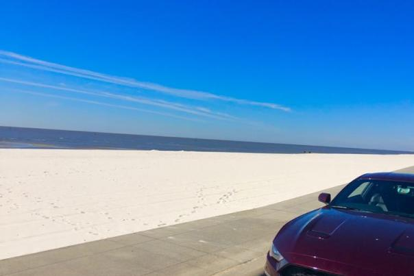 Ultimate US Coastal Scenic Drives Resource Guide
