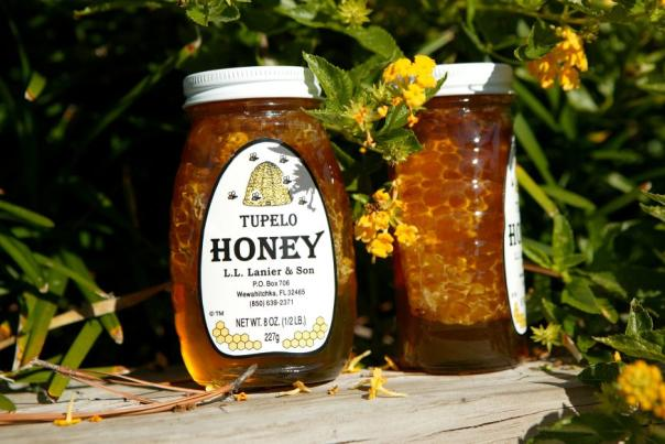 like-summer-and-sunshine-a-sweet-look-at-gulf-county-s-tupelo-honey