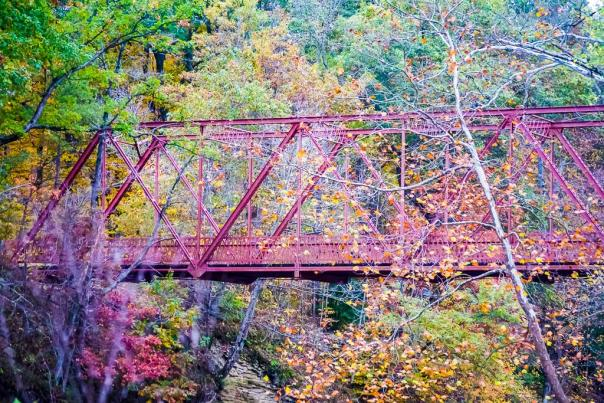 Truss bridge at McCloud Nature Park