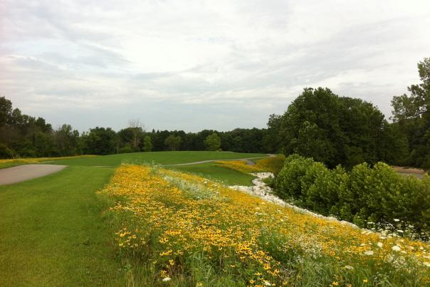 Talon Stream Park in Plainfield