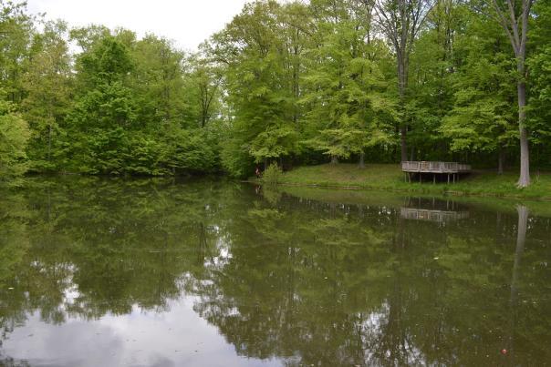 Washington Township Park pond