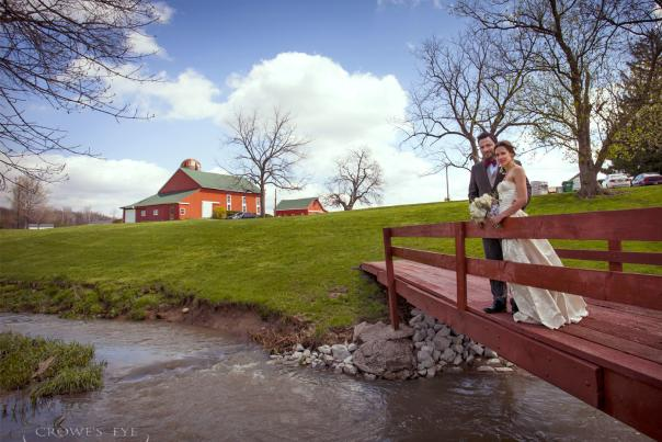 Wedding Background 1