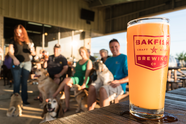 BAKFISH Brewing Company