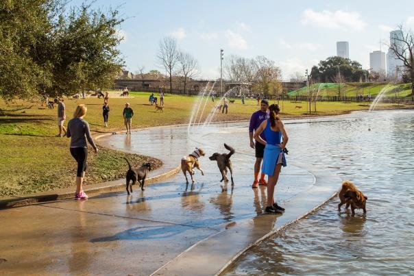 johnny steele dog park