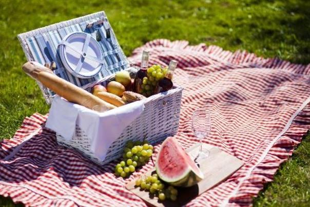 picnic stock photo
