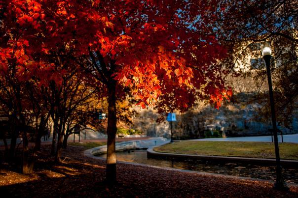 Big Spring Park Fall