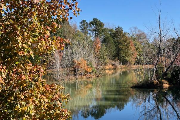 Fall  Hays Nature Preserve & Goldsmith-Schiffman Wildlife Sanctuary