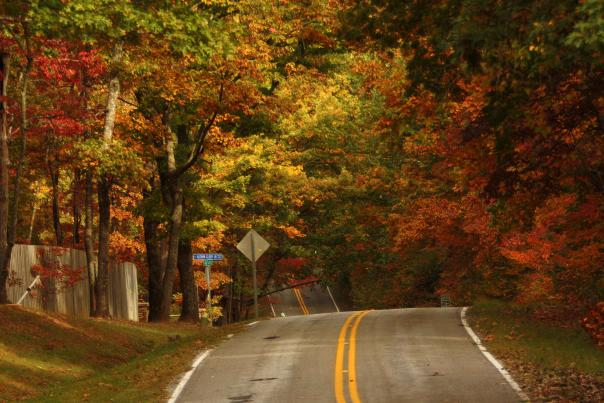 Fall in Huntsville