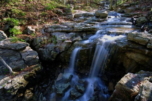 Monte Sano Wildflower Trail Fall