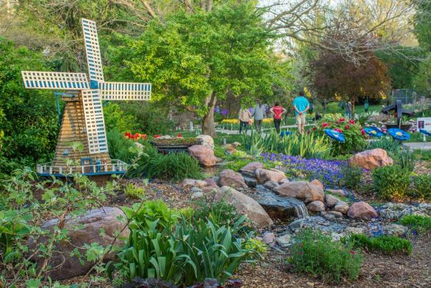 Tulips at Ward Meade Park