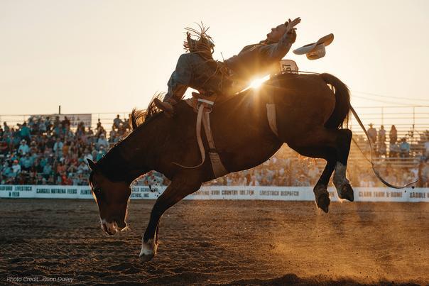 A cowboy riding a bucking horse at the Flint Hills Rodeo in Kansas
