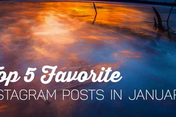 Top 5 Instagram Fan Posts in January