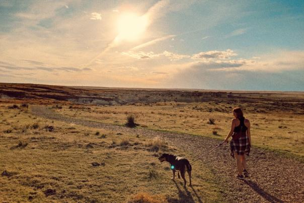 Rebekah and her dog walking into a setting sunset in western Kansas