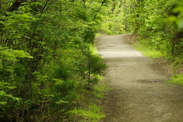 A wooded trail in southeast Kansas