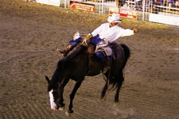 SW Big rodeo