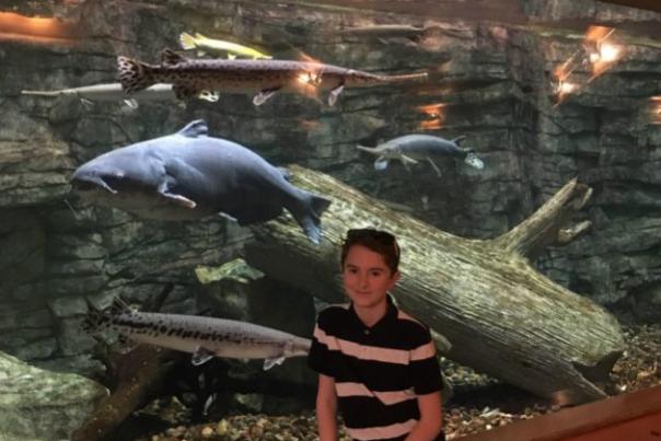 7 Fun Things To Do In Kansas City Kansas With Kids