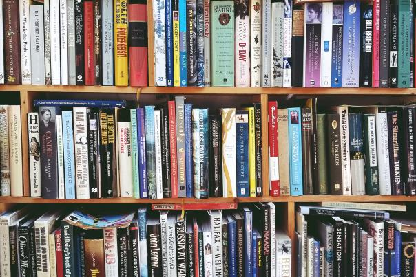 Books on a wooden shelf