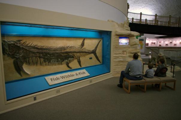 Fish inside a Fish Fossil
