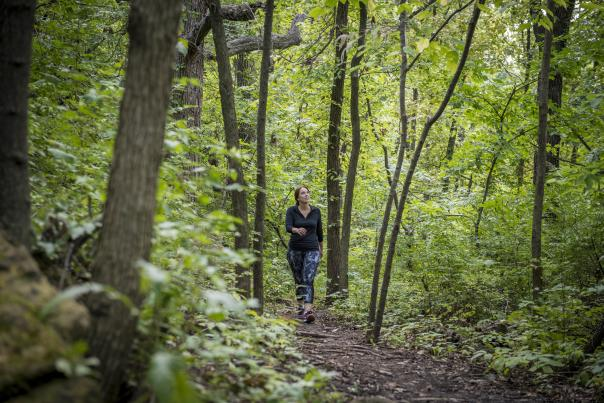 Rozark Nature Trail