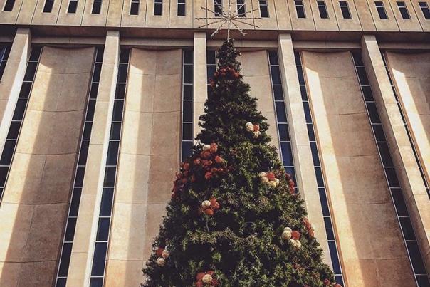 Mayor's Christmas Tree