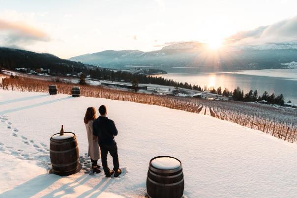 Winter Sunset at 50th Parallel Winery (2)