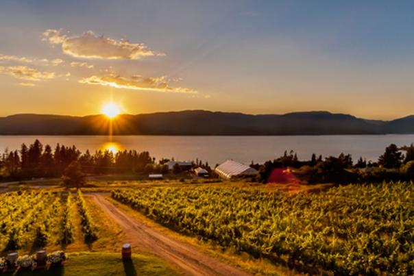 Kelowna Wine Trails - Test