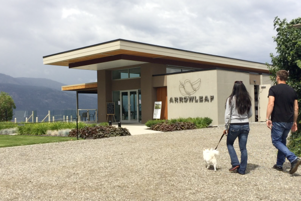 Arrowleaf Cellars Dog Friendly