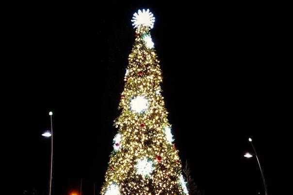 Christmas Tree Light Up Downtown Kelowna