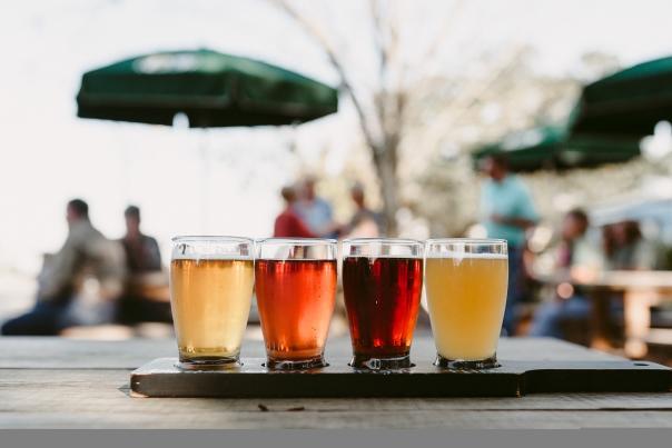 Bayou Teche Brewing Beers On Display