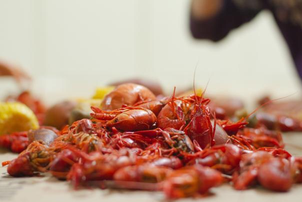 Crawfish boil-20