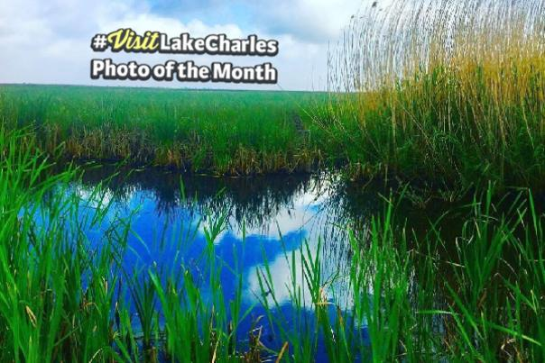 April Photo of the Month